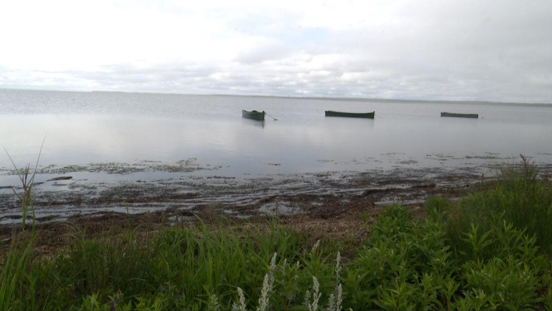 La Baie de Tracadie