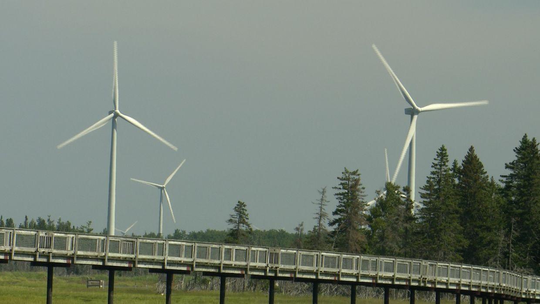 Éoliennes de Lamèque